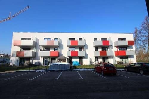neuwertige 2-Zimmer Mietwohnung mit Eigengarten und PKW-Stellplatz