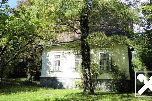 Frühlingserwachen in Reichenau an der Rax