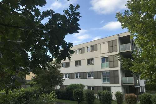 """4 Zimmer Wohnung an der """"Linken Glanzeile"""""""