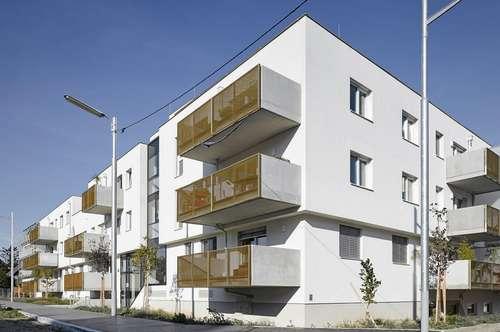 Freie Garagenplätze nähe Leopoldauer Straße