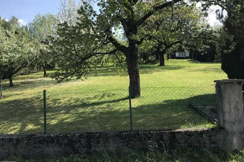 Preßbaum, Rekawinkel, provisionsfrei, verkauft werden 4 sonnige Baugrundstücke in attraktiver Ruhelage