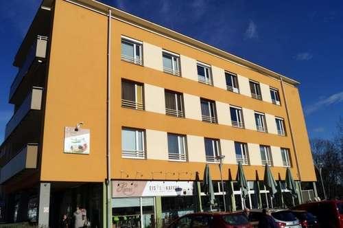 Helle 3-Zimmer Eigentumswohnung mit uneinsehbarer Loggia und Blick auf den Stadtpark – ideal für vitale (3. Stock o. Lift) Genussmenschen