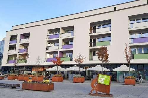 Dachterrassen-Wohnung am Inn ( 2019-02611 )