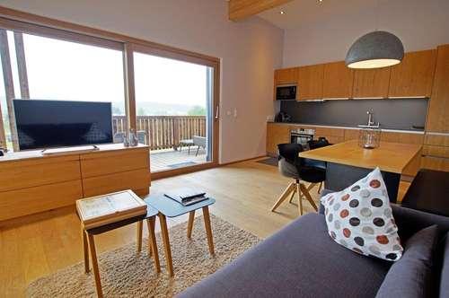 Bezugsfertige, moderne Wohnung ( 2019-02809 )