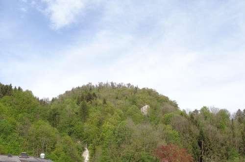 Familienwohnung oder idealer Alterswohnsitz in Hallein: 4-Zi.-Wohnung mit großem Sonnenbalkon u. Carport