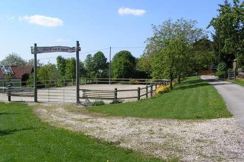 Pferdehof in ländlicher Umgebung - Nähe Therme