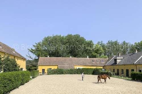 3818 - Historisches Pferdegestüt im Kreuttal