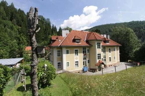 Tolle (Ferien)Wohnung in altem Herrenhaus