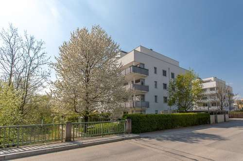 Geförderte Mietwohnung in 3250 Wieselburg