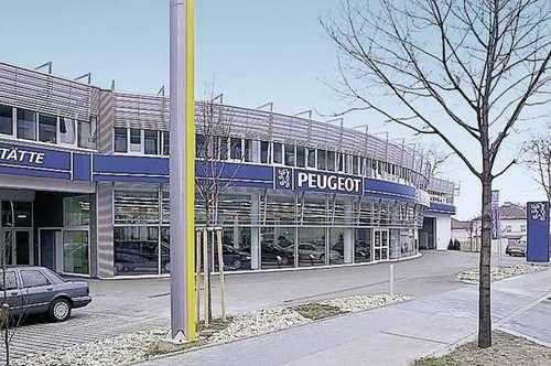 Eigenständige Bürofläche im 1.OG - Peugeot Haus