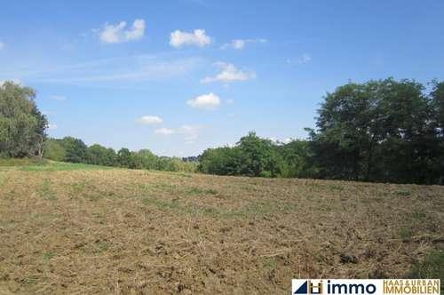 Ca. 1,5 ha Grund mit 2 Bauplätzen in Thermennähe bei Jennersdorf