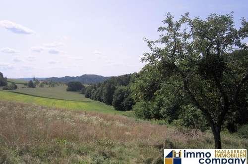 NEUER PREIS - 35.000,-- € - Wenn Sie diesen Ausblick in Jennersdorf genießen wollen……