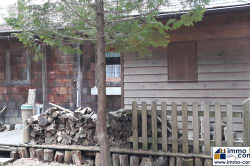 Idyllisches Waldgrundstück mit Fischteich und Hütte in Steinberg-Dörfl