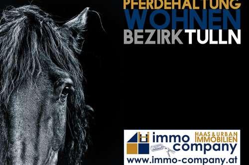 Pferdehaltung und Wohnen   Enormes Potential   Bezirk Tulln