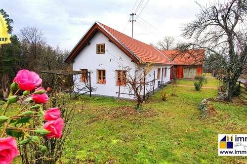 Wunderschönes Bauernhaus – Grün und absolut ruhig gelegen mit schöner Fernsicht! 6 Zimmer auf über 200m², sowie 31.000m² Grund – 498.000 Euro!