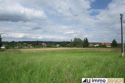 Baugrund in schöner Ortslage bei Jennersdorf 25,-- € /m²