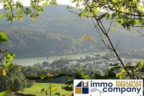 Schmuckes Haus und großes Grundstück mit sehr viel Potential ! Traumlage, Sonnenhang !!