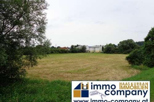 Vielseitig bebaubares Grundstück in schöner, zentrumsnaher Lage in Steinberg