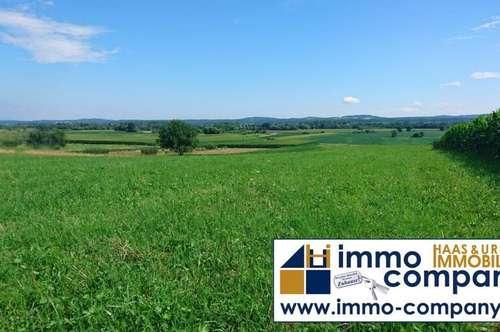 Bezirk Jennersdorf: Wunderschöner Baugrund, ca. 4700m² - ganztägig Sonne - 47.000 Euro!