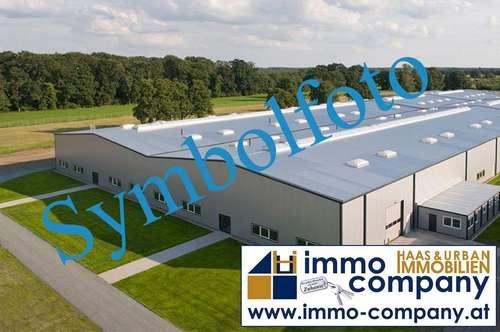 Produktionshalle in Hornstein
