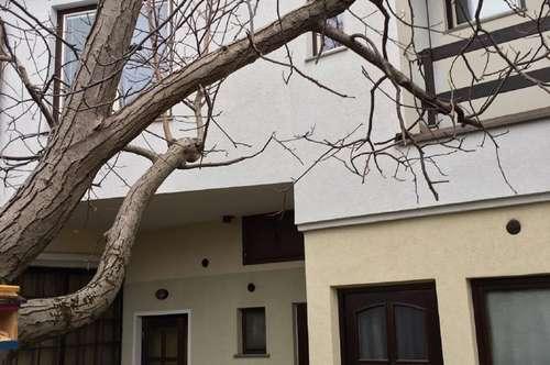 Guntramsdorf/Zentrum neuwertige 2-3- Zimmer Dachgeschoßwohnung/1. Stock zu vermieten
