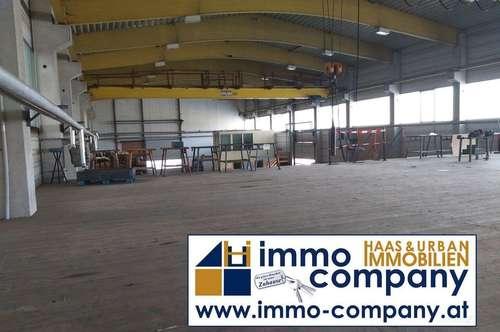 Produktionshalle in Markt Allhau ab Sofort zu Verkaufen mit einem Fiixpreis von 550 000 €