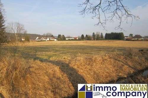 Ca. 1,7 ha ebenerdiger Grund mit Bauland in Jennersdorf