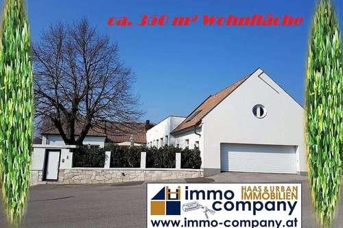 ~~ Große Wohnfläche ca. 350 m² ~~ Einfamilienhaus / Mehrfamilienhaus ~~ ca. 30 min südlich von WIEN