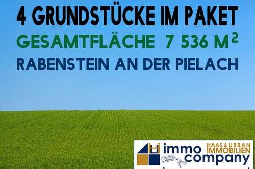 Rabenstein an der Pielach - Vier Grundstücke | Panoramablick | Waldrandlage