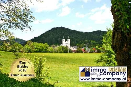 !!! Direkt am Hafnerberg !!! Lage hervorragend, ca.135 qm Miet - Wohnung 950 Euro die Heizkosten & Warmwasser sind inkludiert.