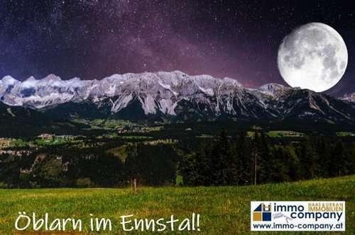 Steiermark, Bezirk Liezen, Öblarn, Eigentumswohnung TOP 3E 66,94m²,EG