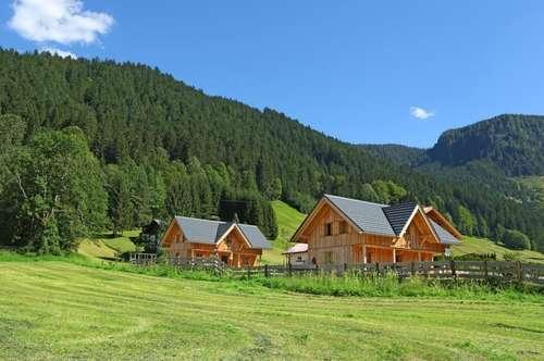 Zwei traumhafte Ferienhütten in Gosau