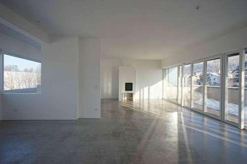 modernes Penthouse mit Traunsteinblick im Grünen