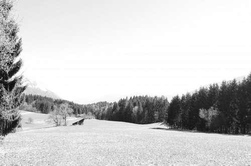 Wald und Wiesengrundstücke in Kärnten - Gailtal (Windische Höhe)