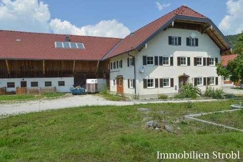 Bauernhaus nahe Neumarkt am Wallersee