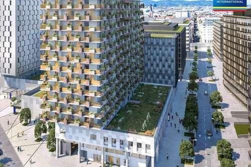 QBC 2a & 2b - Quartier Belvedere Central