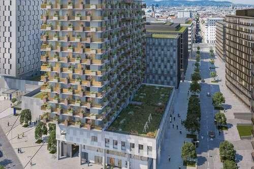 QBC 6 - Quartier Belvedere Central