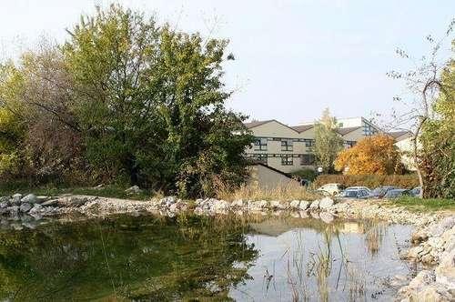 Lukratives Wohnbaugrundstück in Hollabrunn   mögliche Wohnfläche mindestens 7.271,00m²