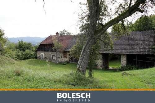 Landwirtschaft/ Grundstück in Viktring - ca. 8.200 m2 in Ruhelage mit Panoramablick