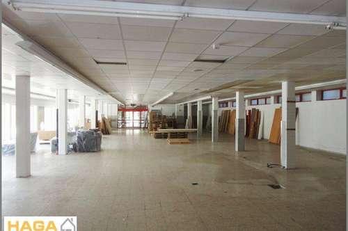 Geschäftslokal im Zentrum von Abtenau - 670 m²