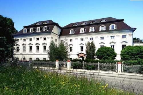 ** AB SEPTEMBER ** Großzügige Galeriewohnung im Schloss Traunegg - Top 33/W