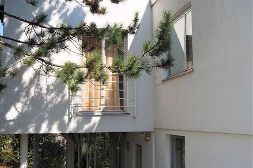 Villa mit Hallenbad in Grünruhelage