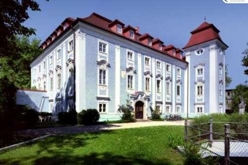 ** Kurzfristig verfügbar ** Ideal für Singles und Paare - Galeriewohnung im Schloss Lichtenegg - Top 30/W