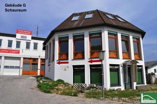 !Gewerbepark Donnerskirchen! Lager, Werkstatt, Büro, Geschäft! Ab 25€ Netto/Monat! 10m2 - 1500m2! Nähe zum Neusiedler See!