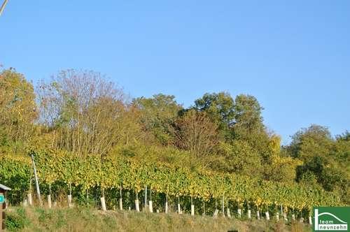 ERSTBEZUG- Doppelhaus 200m² WNfl. mit Garten und 2 Stellplätze! Gestalten Sie Ihren GRUNDRISS.!