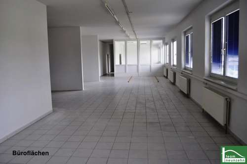 Lager, Werkstatt, Büro, Geschäft! Industriegelände Donnerskirchen! 10 m² Ab 25€ Netto/Monat! 1500 m²!