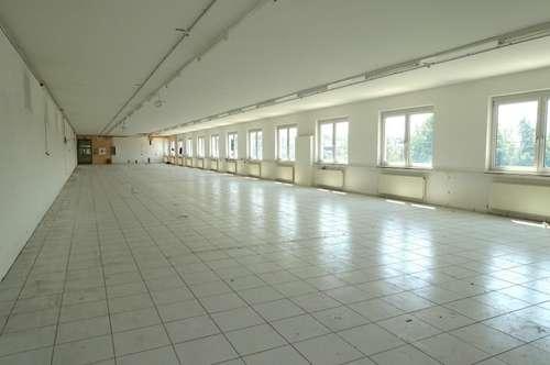 Bürofläche mit 450m2! GEWERBEPARK DONNERSKIRCHEN! Gepflegter Zustand! Stellplätze!