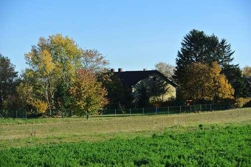 Designerhaus mit Carport! Im Herzen des Weinviertels! Der Natur ganz nahe!