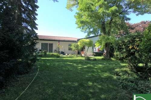 Extravagantes Einfamilienhaus mit 1.659m² Grundstück - Ruhelage - Swimmingpool mit Sonnenterrasse und Biotop