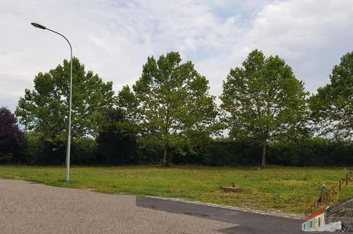 Großes Grundstück direkt an der Grenze SCHWADORF zu verkaufen !